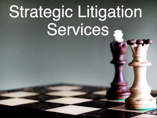 Strategic Litigation Services